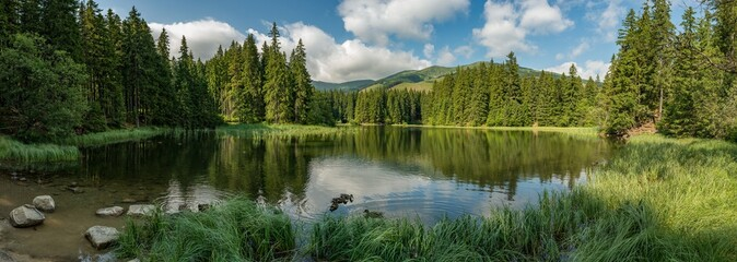 lake in the forest in lower tatra mountains