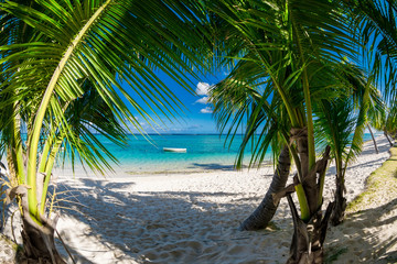 Luxury beach with coconut palms, sand and quiet ocean. Tropical banner