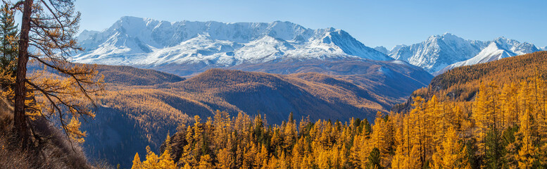 Panoramic autumn view, sunny day, snow-capped peaks.