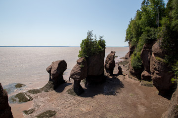 Hopewell Rocks Canada New Brunswick Fundy Park 28.07.2019