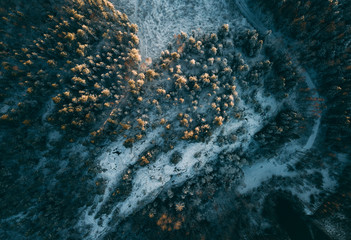 Aerial View of Boreal Forest Nature in Winter Season, Helsinki, Finland