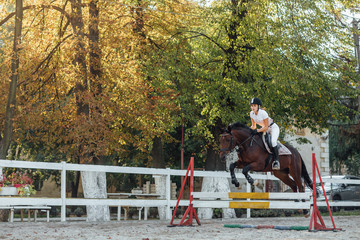 Young woman horse rider sportswoman on equestrian sport competition leaping over hurdle at autumn time.