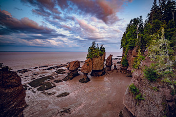 Sunset in Hopewell Rocks at low tide