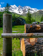 Italian alps, Piedmont, Italy  - Wood timber logs and firewood in Gran Paradiso mountains in Graian Alps in the north of Italy.