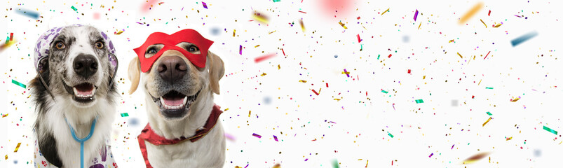 Banner two dogs celebrating carnival, halloween, new year dressed as a veterinarian and hero with red mask, cape  costume. Isolated on white background with confetti falling
