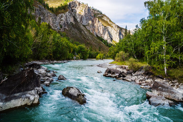 Behemoth River Rapid on the Chuya River, Mountain Altai, Russia