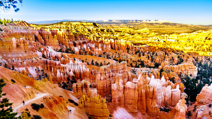 The Vermilion Colored Hoodoos at Sunset Point of Bryce Canyon National Park, Utah, United States