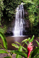 Waterfall over volcanic rock into a tranquil pond in Tahiti, French Polynesia