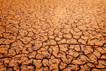 The impact of global warming on sun-cracked soil and the loss of all fauna and flora.