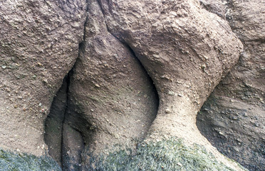 Hopewell Rocks, Kanada, New Brunswick