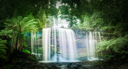 Waterfall in dense rainforest
