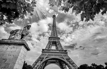 Eiffel Tower in Paris France with Golden Light Rays. Black and White Photography
