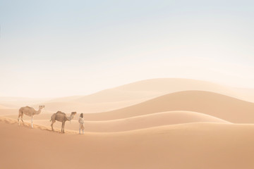 Bedouin and camels on way through sandy desert. Nomad leads a camel caravan in the Sahara during a sand storm, Morocco, Africa