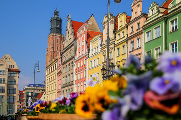 St. Elizabeth's Church tower overlooking some colorful buildings on Wroclaw's market square in Poland with a flower bed in the foreground