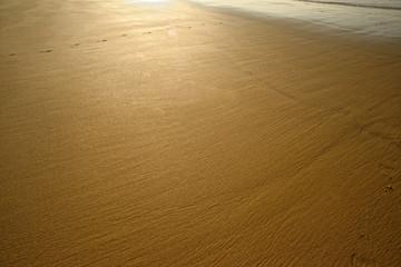ゴールド色の砂浜