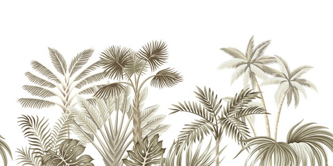 Tropical vintage beige botanical landscape, palm tree, banana tree, plant floral seamless border white background. Exotic green jungle wallpaper.
