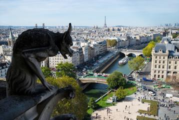 View from Notre Dame de Paris. Stone demon gargoyle with Paris city on background