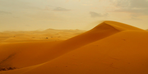 sand dune in the sahara desert