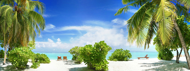 Beautiful tropical beach with white sand, palm tree, beach sunbeds turquoise ocean on  background blue sky with clouds on sunny summer day. Perfect landscape for relaxing vacation, island of Maldives.