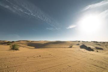Desert landscape at the Emirates