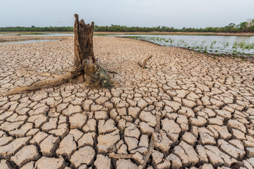 Brown drought dry land soil or cracked ground texture