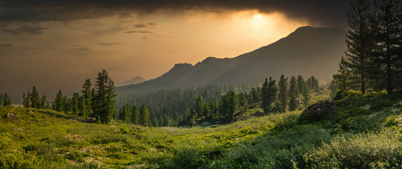Panoramic view with mountain range, evergreen cedar trees, green grass valley and dramatic clouds sunset in Chamar-Daban, Siberia, Russia, national park