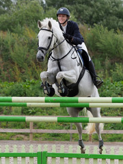 Showjumping Horse