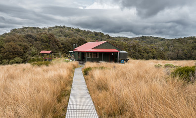 A department of conservation hut perched on the plains in new zealand native bush