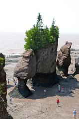 Hopewell Rocks - Bay of Fundy - New Brunswick - Canada