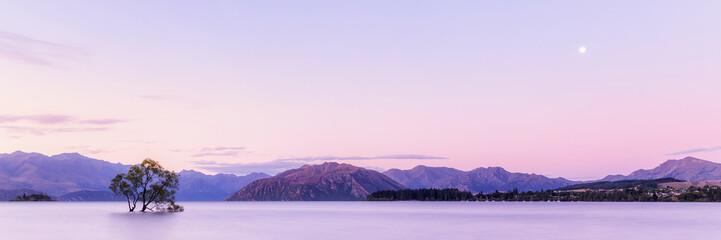 That Wanaka Tree at Sunset, Lake Wanaka New Zealand, Popular Travel Destination South Island, NZ