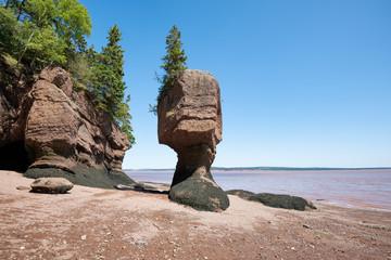 Hopewell Rocks auch Flowerpot Rocks, Bay of Fundy, New Brunswick, Kanada