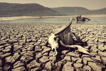cracked earth from arid drought weather in dam or river, hot summer nature and warming climate environment