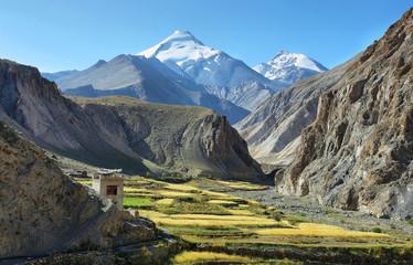 Green valley along Markha valley trek with Kang Yatse peak at background, Ladakh, India
