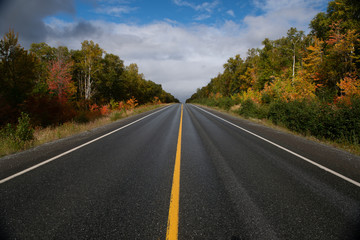 A two lane road of dark wet black asphalt with a single yellow line down the middle. There are colorful trees on both sides. There's a blue sky with white fluffy clouds in the background