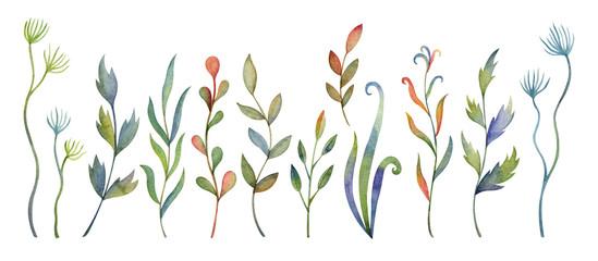 A watercolor set
