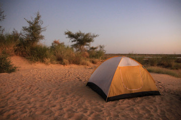 namiot rozbity na plaży obok krzewów w ciepły letni wieczór