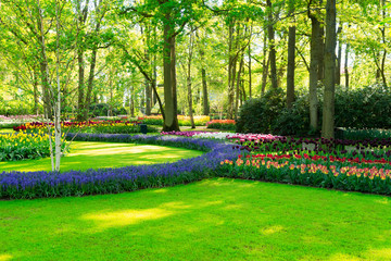 fresh lawn with flowers