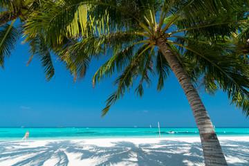 Sandy beach of tropical island in the Maldives