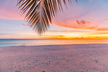 Landscape of paradise tropical island beach, sunrise shot. Beautiful sunset landscape, vacation beach banner