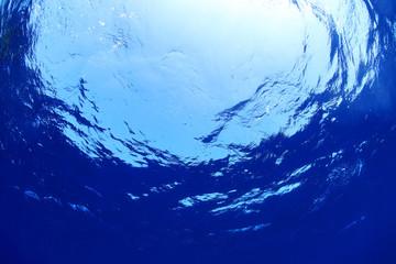 Underwater world of the ocean