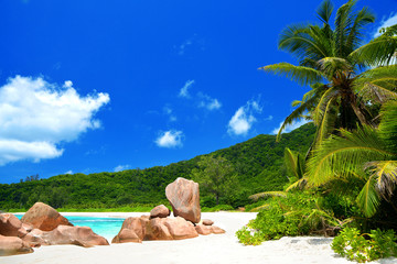 Anse Cocos beach in La Digue Island, Seyshelles. Tropical landscape with sunny sky.