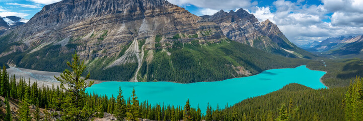 Panorama of Peyto lake on Icefields Parkway in Banff National Park, Alberta, Rocky Mountains, Canada
