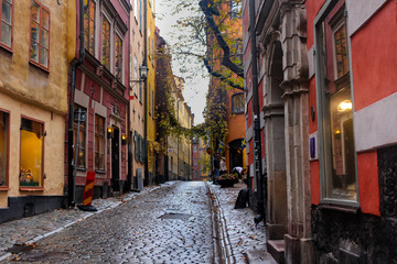 A narrow, empty street paved with cobblestones in  European city, surrounded by pleasant colored buildings with unusual windows and a natural arch of tree branches and foliage.