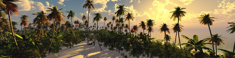 Palm trees on sunset background, silhouettes of palm trees at sunset, sky with palm trees