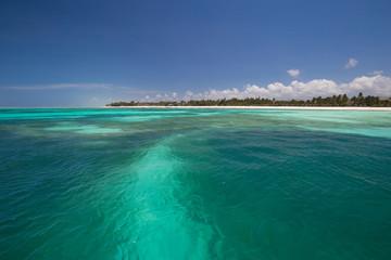 Zanzibar, landscape sea, coral reef