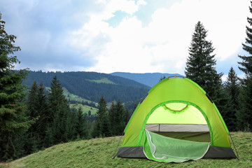 Green camping tent near beautiful conifer forest