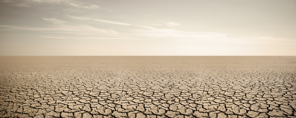 Panorama of dry cracked desert. Global warming concept