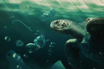 turtle swiming among trash in the ocean / photo composite
