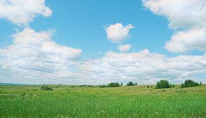 rustic summer landscape with green field and blue sky with clouds. beautiful nature background