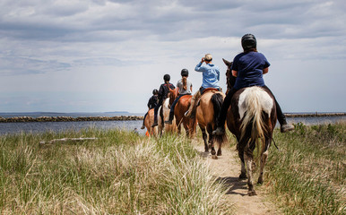 horses and riders on the beach on a beautiful afternoon